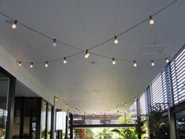 Catenary wire lighting