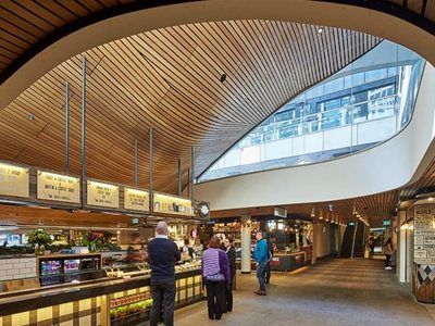 curved timber ceiling cafe interior