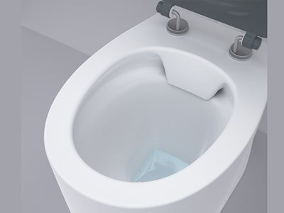 Detailed product image of Caroma Care Cleanflush toilet