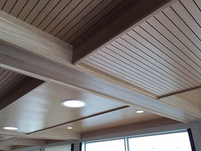 Detailed image of ceiling lining system in Carpe-Diem Houseboat