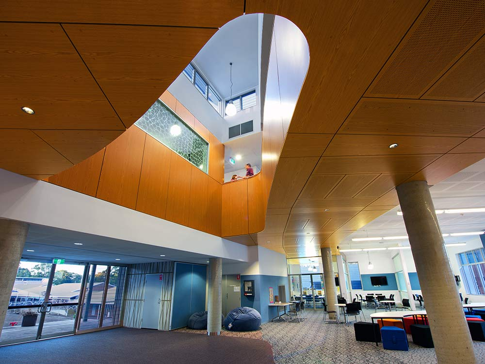 Acoustic ceiling panels school library