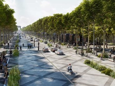 Plans include creating tunnels of trees and 'planted living rooms'