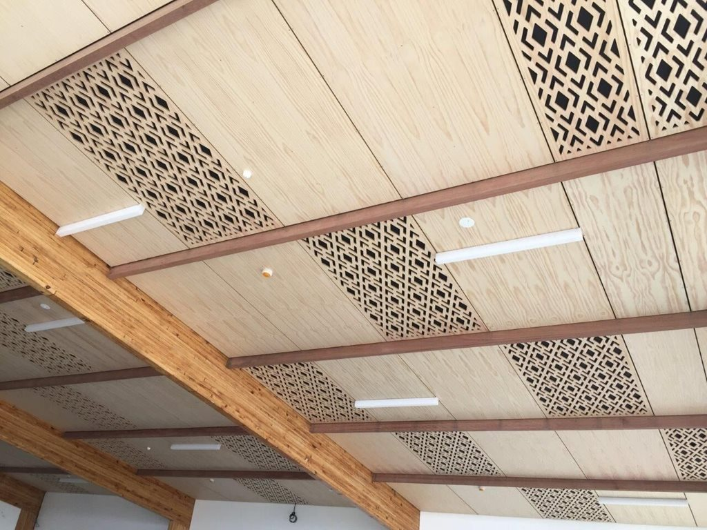Fireshield Intumescent coatings ceiling