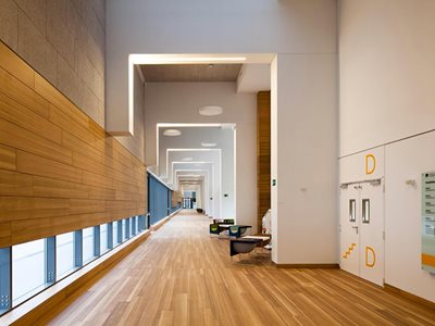 Prodema Natural Wood Cladding Modern Commercial Interior Corridor