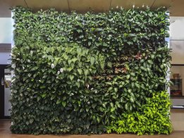 Gro-Wall® vertical gardens made easy!
