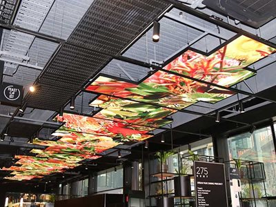 Kent Street Shopping Mall LED Screens Ceiling Installation