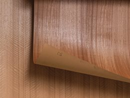 WoodWall: Real timber wallpaper