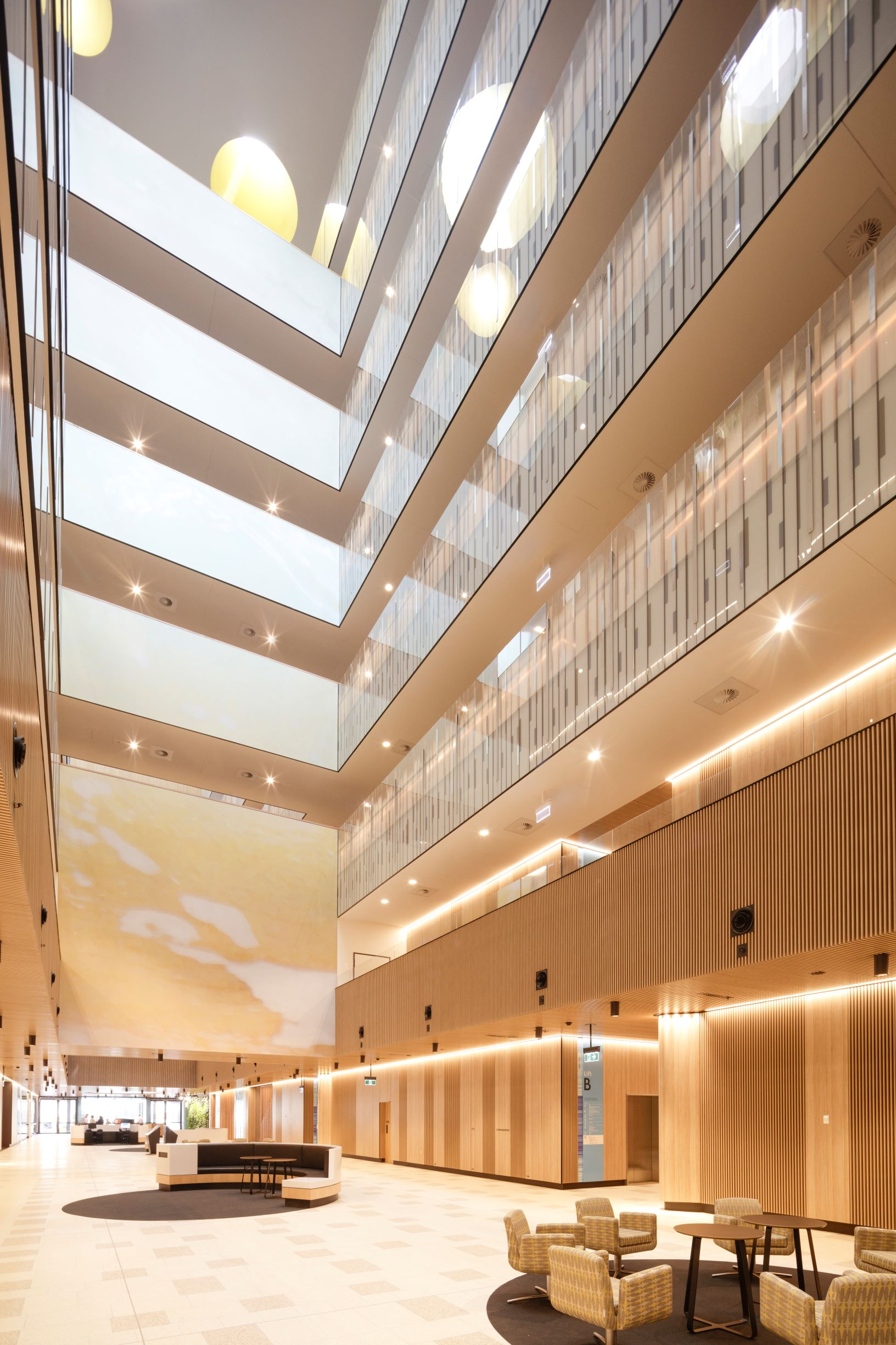 northern-beaches-hospital-timber-bvn-architecture
