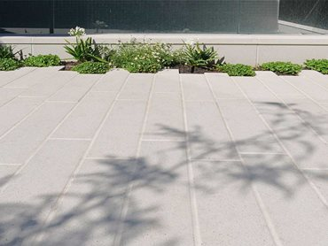 The combination of the hard paving and plants achieves a balanced landscape.