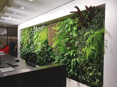 Office with vertical garden wall
