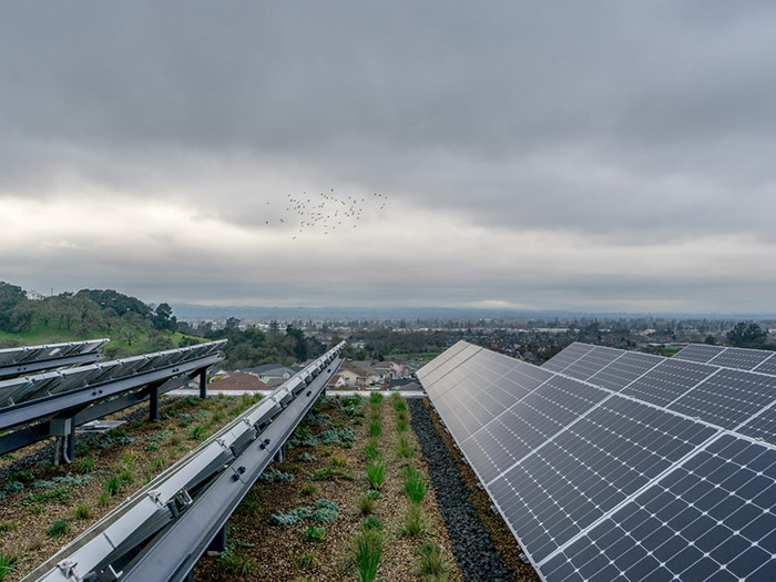 External field shot of sustainable solar panels