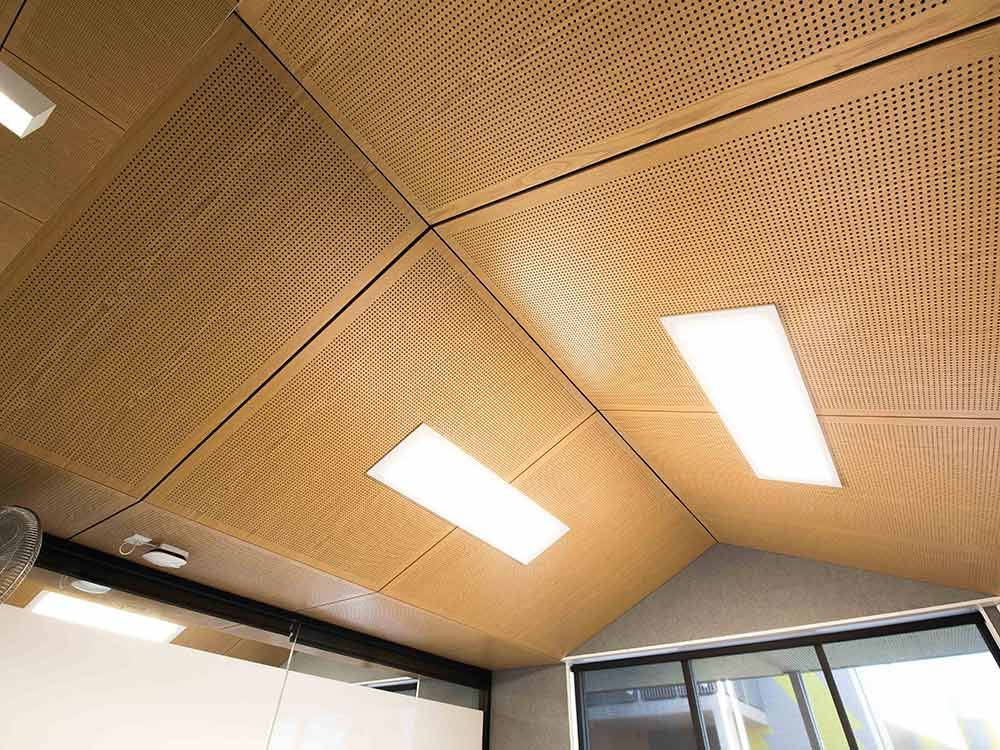 Hunter Sports High School acoustic ceiling panels