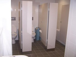 Professional Toilet Cubicles for Office Blocks and Buildings