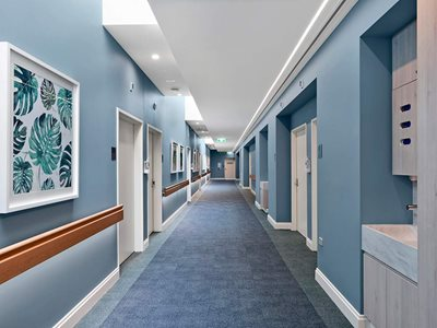 Hospital interior with timber handrails and blue walls