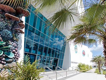 Cairns Aquarium – Cairns QLD