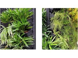 VersiWall®GP low maintenance vertical gardens