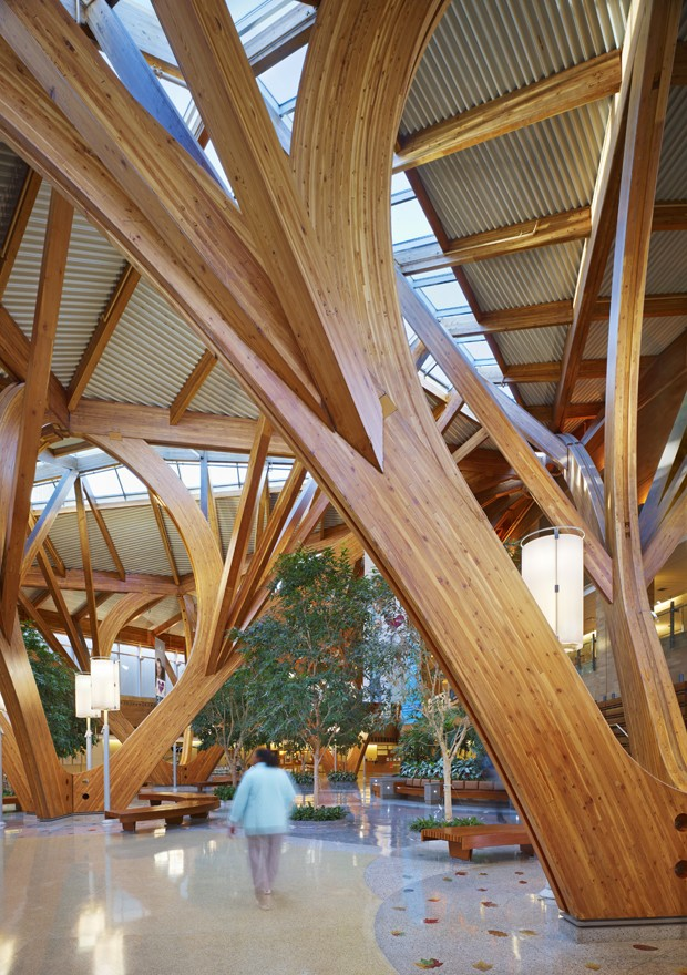 The power of acoustics for causing health architecture Wood valley designs