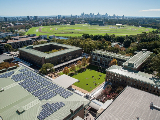UNSW gives green light to ditching fossil fuels on World Environment Day