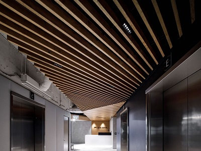 Timber ceiling