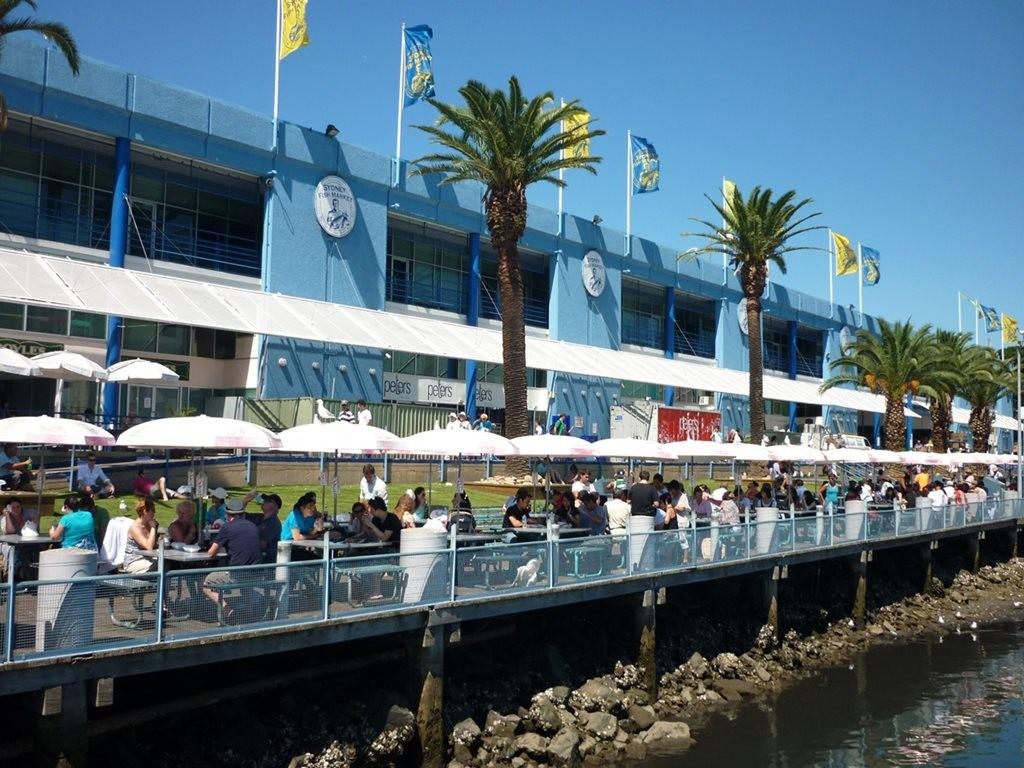 Design Tender Announced For New 250 Million Sydney Fish