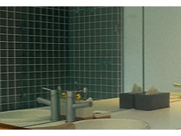 Viridian Architectural Glass - DécorMirror Safe™