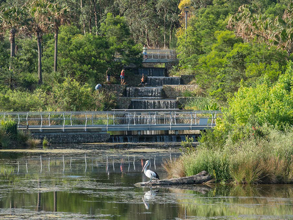 Sydney Park recognised as best in the world