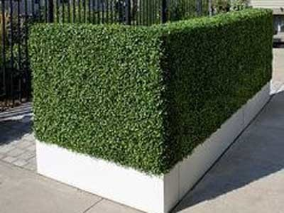 Privacy can be ensured by having a hedge with several layers to fill the gaps