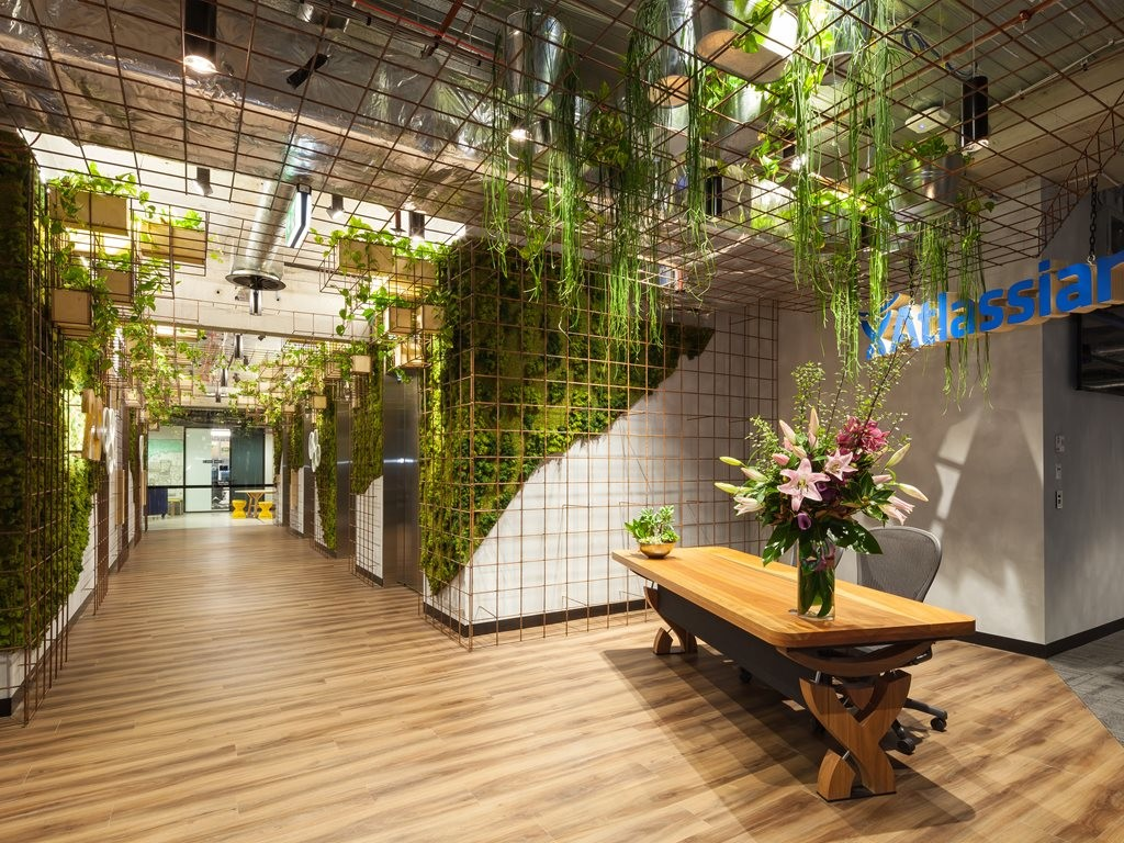 Jungle theme keeps Atlassian offices in the green