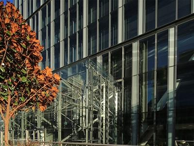 Viridian Performance Glazing In Atrium Creates A Vibrant
