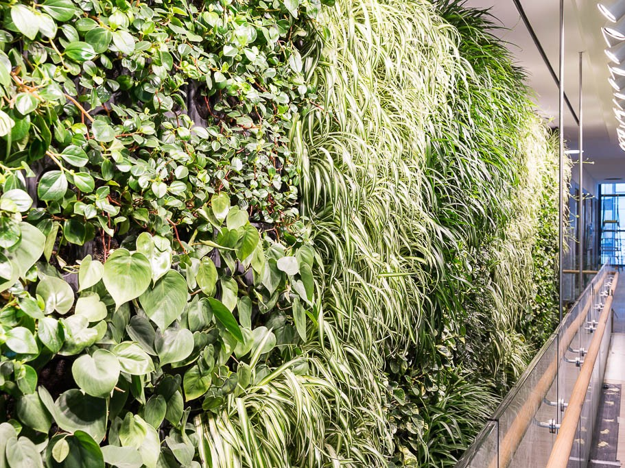 Junglefy Breathing Wall wins 2016 Sustainability Awards - Green Building Product prize
