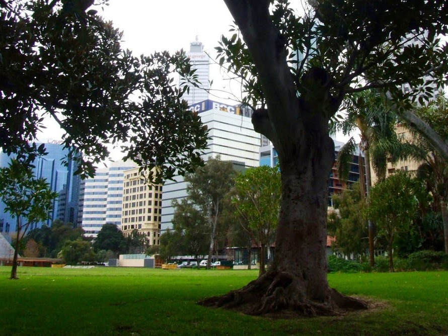Perth has long had many fine parks but is losing vegetation cover in a band of increasingly dense development across the city. Photography by Ruben Schade