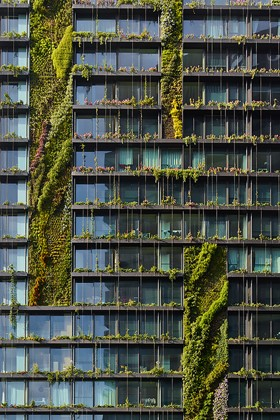 The story behind Patrick Blanc vertical gardens at Sydneys One
