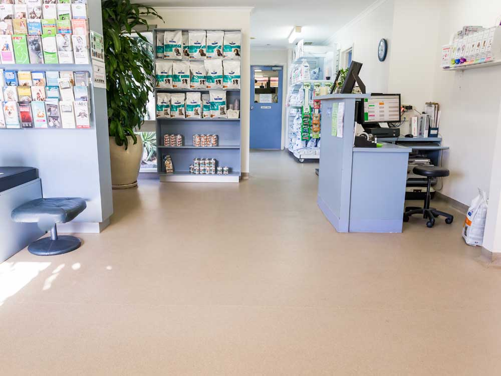 Altro Walkway 20/VM20 safety flooring at the veterinary clinic