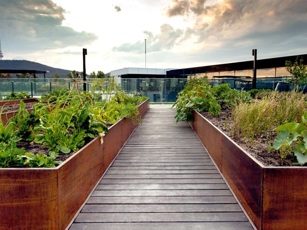 Getting Green Roofs Right In Australia 6 Of The Best