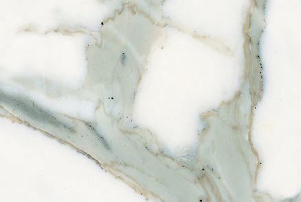 Honed Calcatta Marble