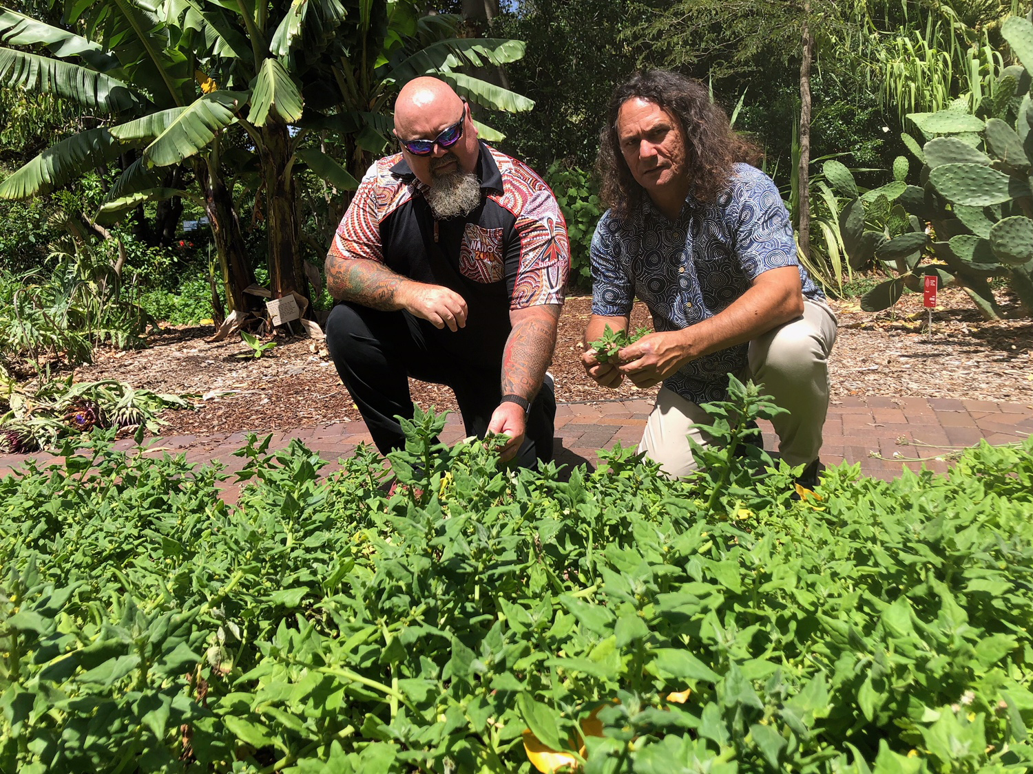 Mirvac has joined forces with cultural start-up Yerrabingin to bring to life a unique, Indigenous rooftop farm concept in central Sydney. Image: Christian and Clarence from Yerrabingin / Supplied