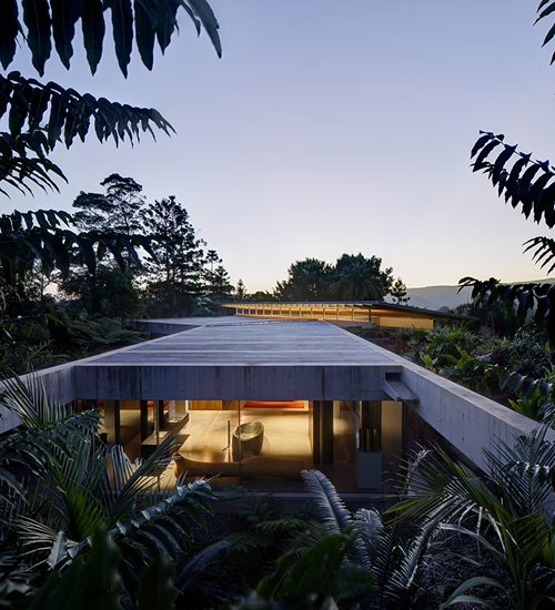 subtropical architecture