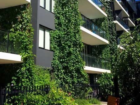 A maintenance plan for a green structure needs to be factored in at the design stage