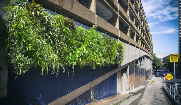 Greening sydney australia s first green roof and walls for Landscape design courses adelaide