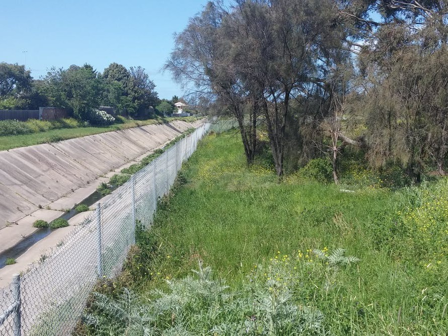 Stony Creek drain: untidy and often slightly threatening, informal green space still has value for residents, which appropriate intervention can enhance