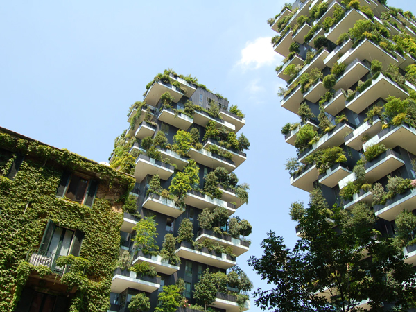net zero carbon buildings