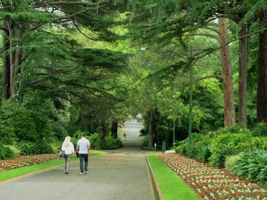 Melbourne Uni Opens Landscape Design Competition For