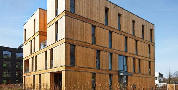 Australian Wood Panelling : Cross laminated timber clt australia s rising star