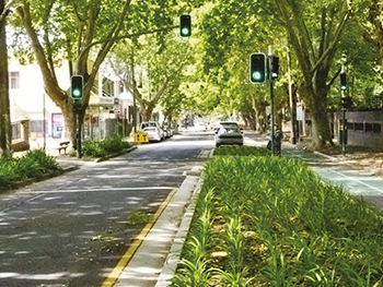 Green Infrastructure Makes Cities More Liveable And