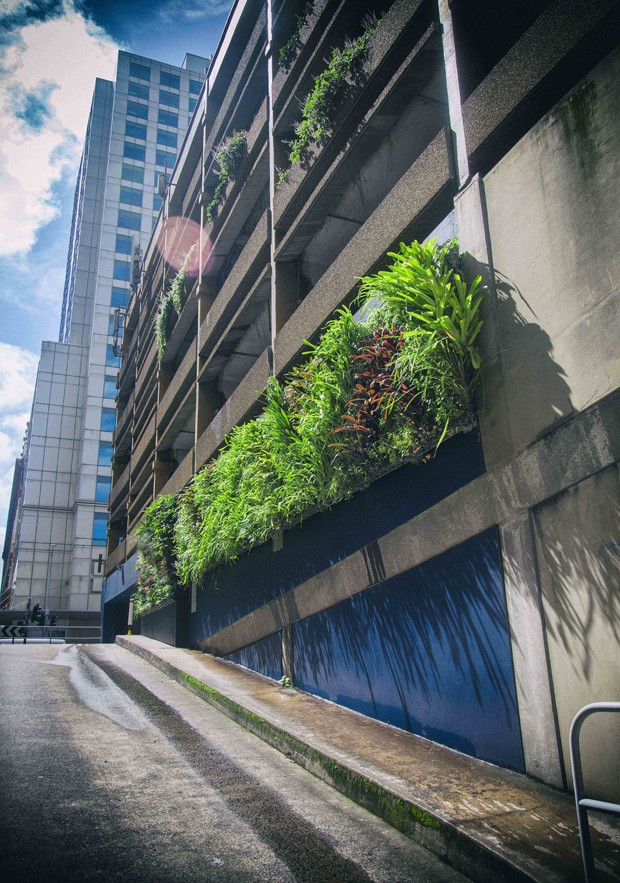 Greening sydney australia s first green roof and walls for Landscape design courses sydney