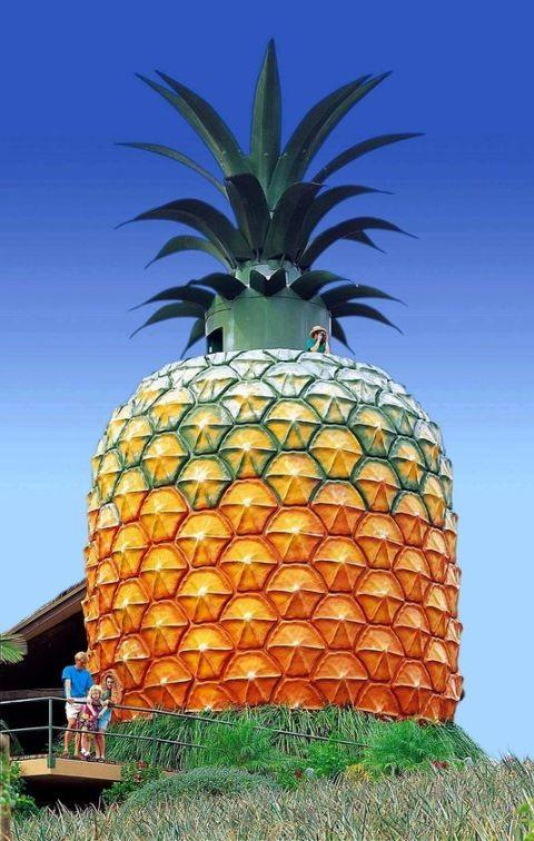 Big Pineapple Restoration Begins Architecture And Design