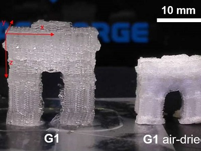 How a 3-D-printed object composed of hydrogel (G1) can change size after printing. Credit: Chenfeng Ke
