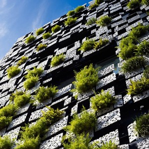 Five examples of vertical gardens - including a preview of the world's tallest
