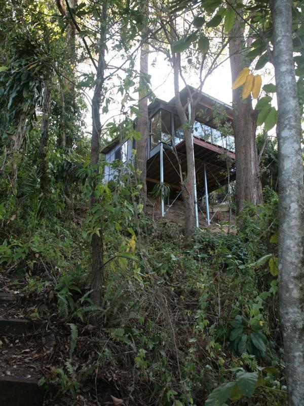 Sunshine Coast Bush Treehouse Features Roof Overhang