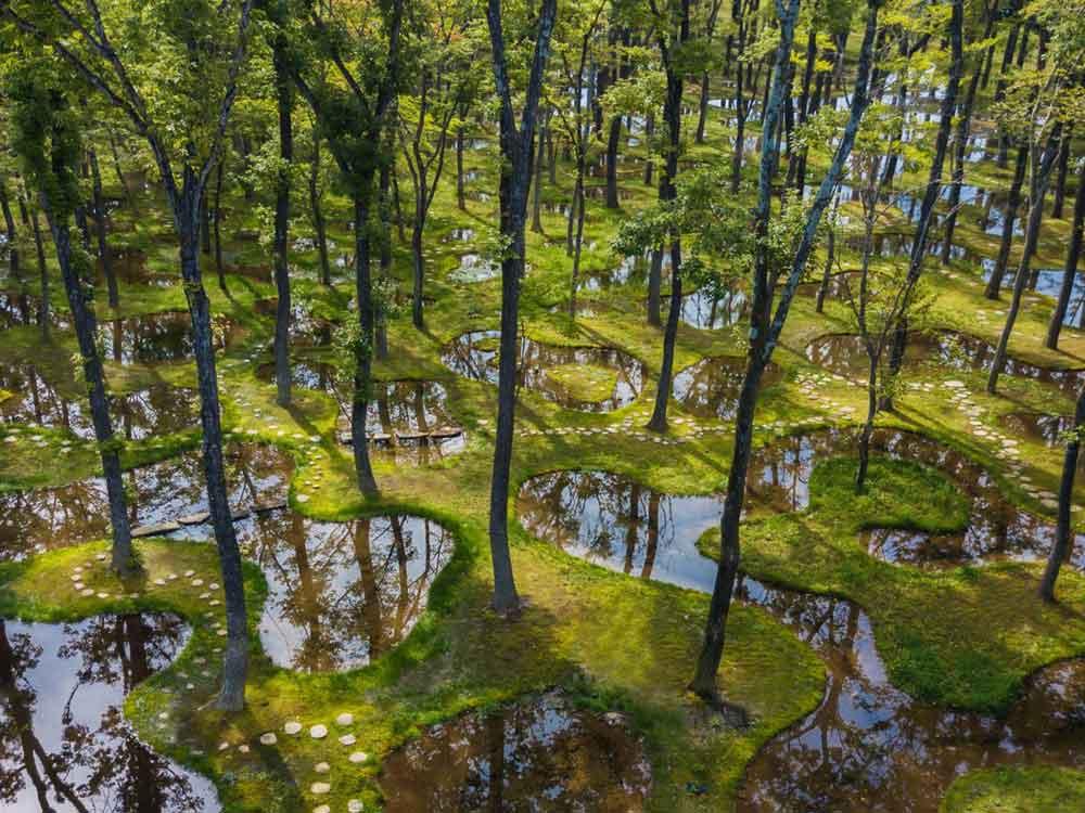 Ishigami S Japanese Water Garden Wins Inaugural Obel Award